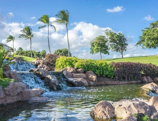 Vacances à Hawaii : 3 activités touristiques immanquables à faire