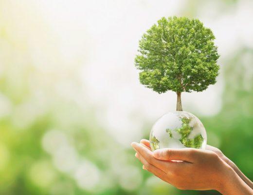 Comment un Bilan Carbone® peut aider une entreprise à faire baisser des émissions de Gaz à effet de serre ?